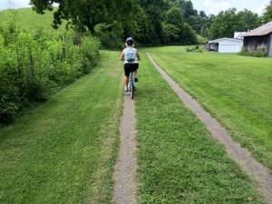 While most of the Creeper Trail between Damascus and Abingdon, Va., is under a shade tree canopy, this section near Alvarado Station at mile post 9 is open as the trail passes through private residences.