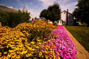 Well-groomed yards and huge floral gardens are customary in Ohio's Amish country.