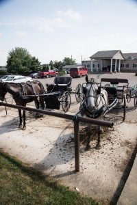 Hitching posts are frequent sites in Berlin, Ohio's Amish country. Wal-Mart built a 13 stall covered shed to accommodate Amish rigs. Water is also available for the horses.