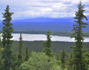 One of the Cobb Lakes in a chain of three. The Wrangell-St. Elias mountains are seen in the distance on a cloudy day.