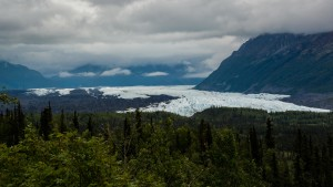 About 100 miles from Anchorage on the Glenn Highway is the Matanuska Glacier,. The glacier is four miles wide . Visitors can turn off the highway and drive to a parking area and walk about 15 minutes to the face of the glacier.