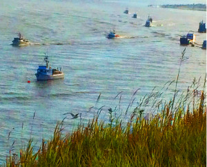 Part of the Kenai Cook Inlet fishing fleet returns to port after a day of sockeye fishing.
