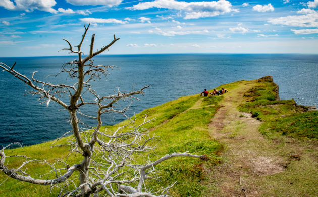 Newfoundland Skerwink Trail among best in North America, Europe