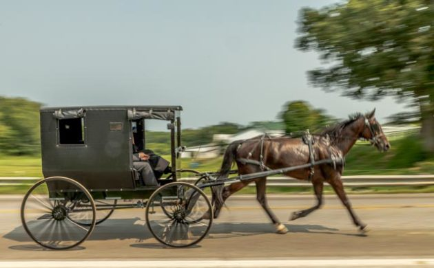 Back in Ohio Amish Country